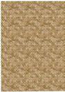 דף טרנספר - כוורת זהב TR640