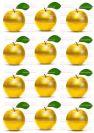 דף טרנספר - תפוחים זהב TR636