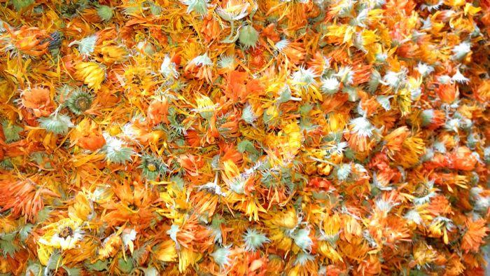 100 גר' פרחי קלנדולה אורגניים