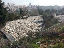 בית הקברות שיח' באדר