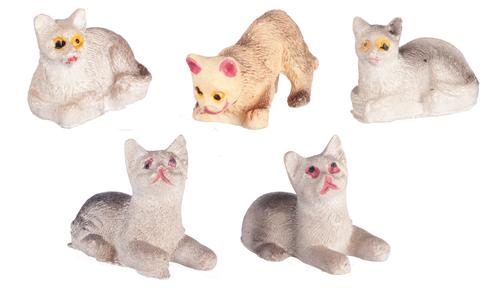 חתולים מיניאטוריים שונים