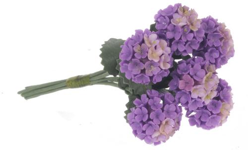 פרח הידראנגאה מיניאטורי