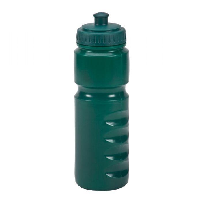 בקבוק הדסון