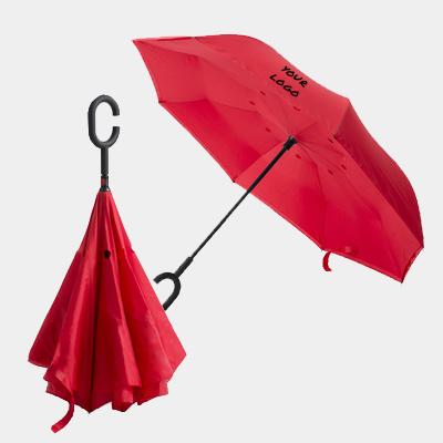 מטרייה קים