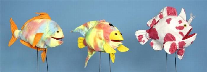 דגים טרופיים- דגי שונית 2