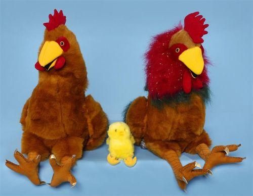 תרנגול- תרנגולת- אפרוח