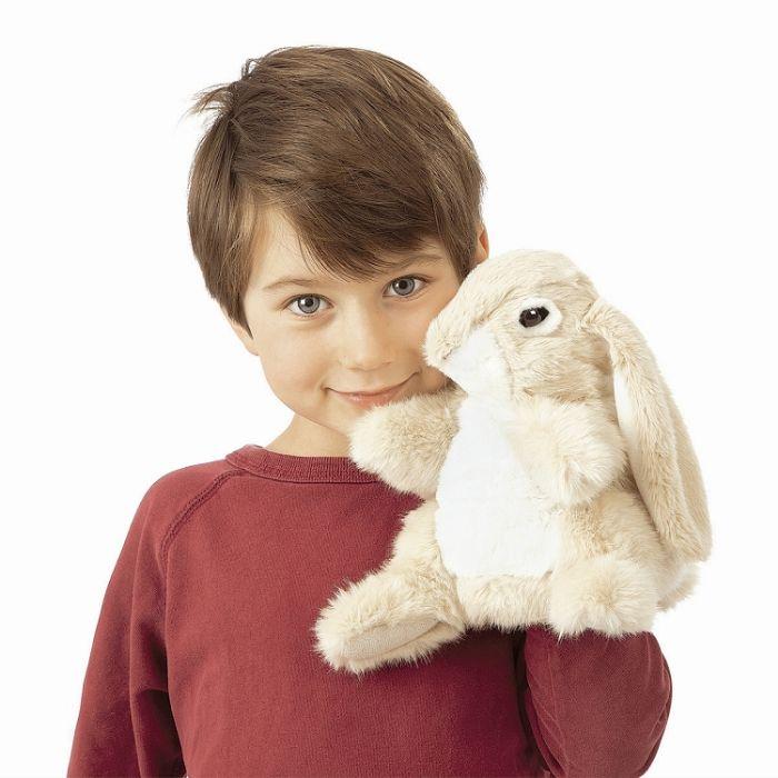 ארנב שמוט אוזן