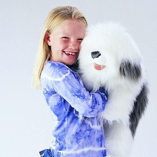 FOLKMANIS כלב רועים 2029