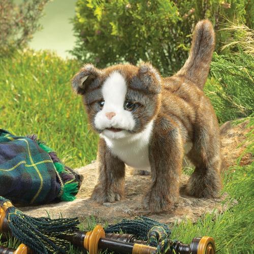 FOLKMANIS גור חתולים סקוטי 2989