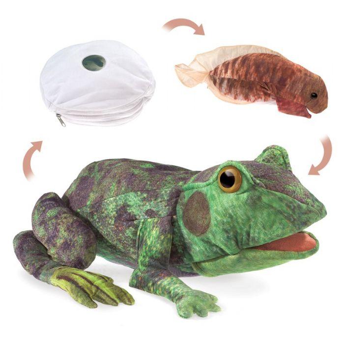 FOLKMANIS  גילגולה של צפרדע 3115