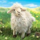 FOLKMANIS כבשה שעירה 2982
