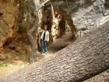 המעבר בסלע