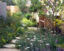 גן מקומי עיצוב גינות ארץ ישראליות וים תיכוניות