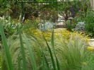 עיצוב גינה בלי דשא