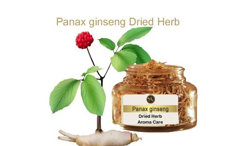צמח מרפא גיסנג קוראני