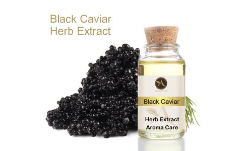 מיצוי מצמח מרפא קויאר שחור