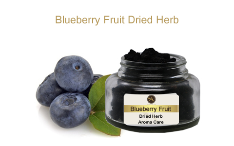 צמח מרפא אוכמניות פרי