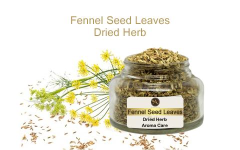 צמח מרפא שומר זרעים עלים