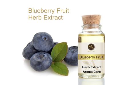 מיצוי מצמח מרפא אוכמניות פרי