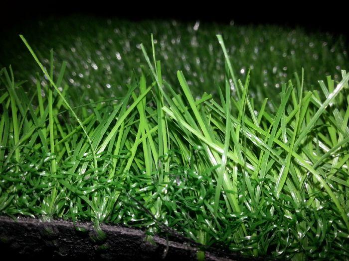 דשא סינטטי אנגורה 42