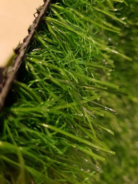 דשא סינטטי סופט 41