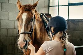 רכיבה טיפולית אישה מלטפת סוס