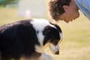 פתרונות אילוף ובעיות התנהגות של כלבים