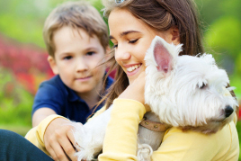 טיפול דיאדי הנעזר בבעלי חיים מטפלת וילד מלטפים כלב
