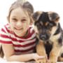 לימודי סיוע חינוך ושיקום בעזרת כלבים ילדה וכלב