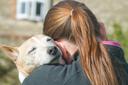 נערה בסיכון מחבקת כלב בטיפול