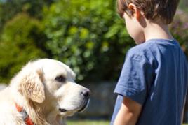 ילד וכלב