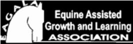 ארגון EAGALA טיפול בעזרת סוסים