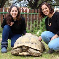 אפרת רחמים ורחל עמר - טיפול בעזרת בעלי חיים