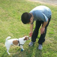ילד עם כלב טיפול בעזרת בעלי חיים