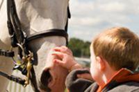 טיפול עם סוסים בהפרעות קשב וריכוז ילד מלטף סוס