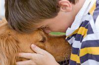 """ילד מחבק כלב טיפול עם בע""""ח לילדים בשיקום מכוויות"""