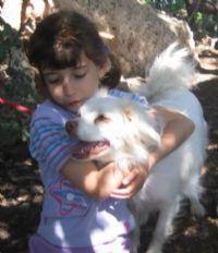 ילד מחבק כלב טיפול רגשי הנעזר בכלבים טיפוליים