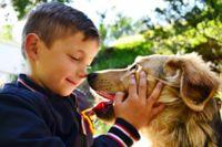 ילד משחק עם כלב - התמודדות עם פחד מוות