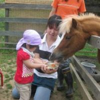 טיפול בעזרת בעלי חיים - יפן