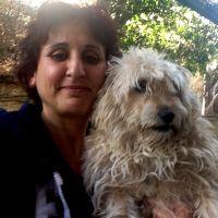 מיכל לב נבון עם כלב טיפול רגשי מסתייע בבעלי חיים