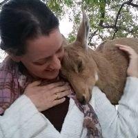 מיכל טייבר - מטפלת רגשית בעזרת בעלי חיים