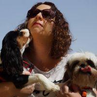 טל אפריאט - כלבנות טיפולית