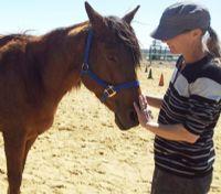 ילדה מחזיקה סוס חוות רכיבה טיפולית