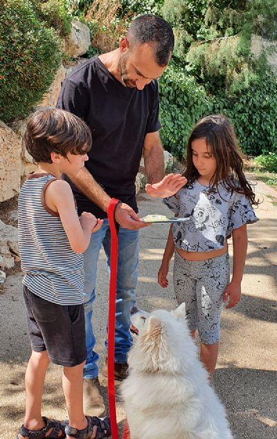 אור אופיר - מטפל קבוצתי בעזרת כלבים | כלבנות טיפול