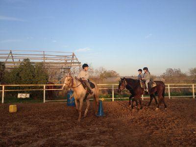 חוות הסוס - רכיבה טיפולית