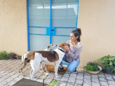 ניצן ישראלי מירוז - מטפלת בעזרת בעלי חיים ובאמצעות