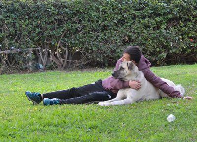 אצל שחר ויעל טיפול בעזרת בעלי-חיים