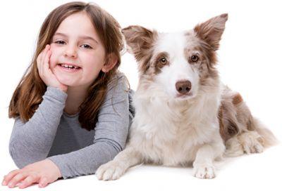 כלב וילדה - אילוף כלבים