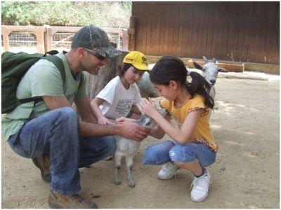 לימודי טיפול בעזרת בעלי חיים - בולבי