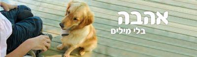 כלבנות טיפולית - ילד נכה